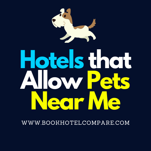 Hotels that Allow Pets Near Me